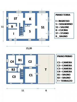 1-house-plant